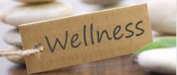 wellness_72-1024x434